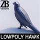 Lowpoly Hawk 001