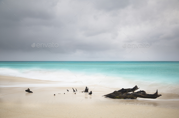 Stormy Caribbean Beach With Driftwood, Antigua - Stock Photo - Images