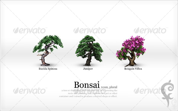 Bonsai Wallpaper - Nature Backgrounds