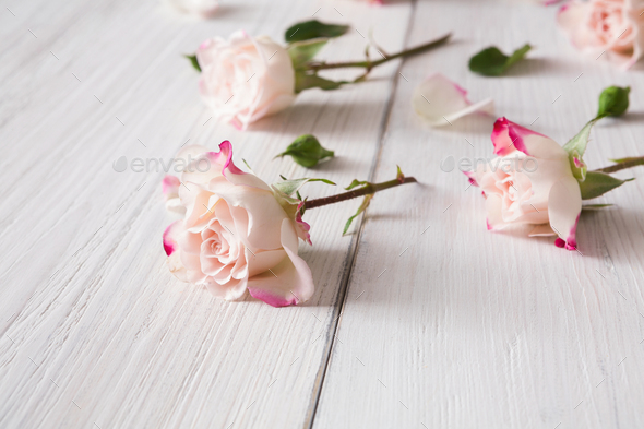 Floral pattern made of pink roses on white rustic wood, closeup - Stock Photo - Images