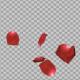 Rose Petals Falling Pack - VideoHive Item for Sale
