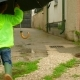 Boy with an Umbrella Running Around the Yard in Rubber Boots - VideoHive Item for Sale