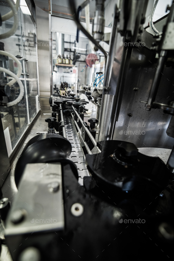 Conveyor on microbrewery - Stock Photo - Images