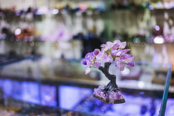 Precious Amethyst Stone Tree - Stock Photo - Images