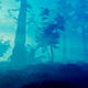 Panorama Of The Morning Forest - VideoHive Item for Sale