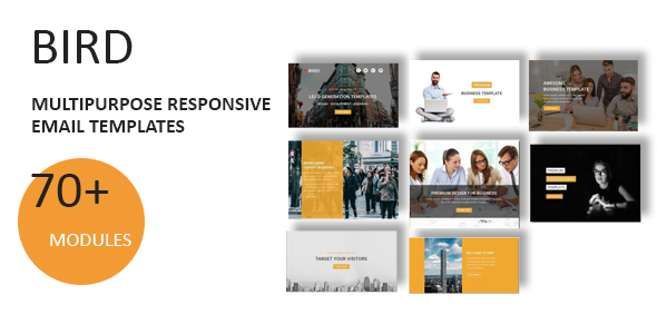 ThemeForest Bird Multipurpose Responsive Email Template With Online StampReady Builder Access 21144336