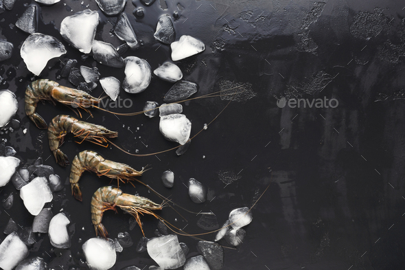Raw shrimps with ice cubes on black background - Stock Photo - Images