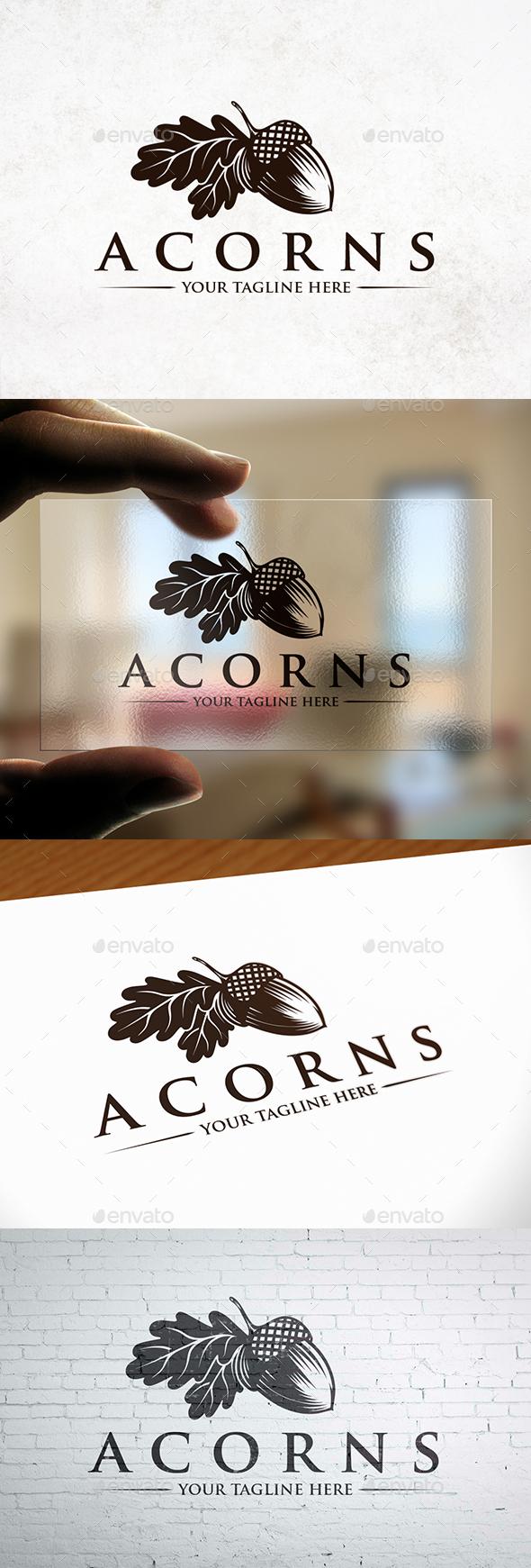 Creative Acorn Logo Template - Nature Logo Templates