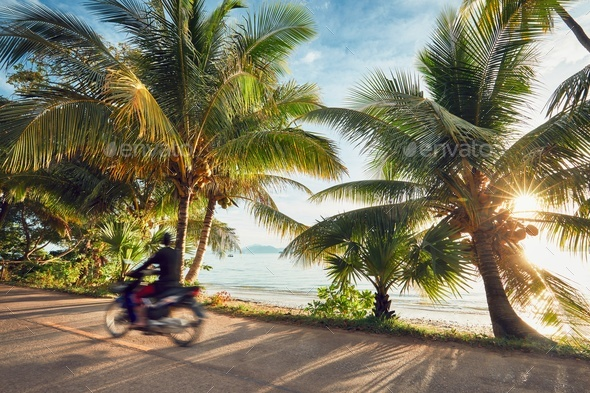Road trip on the tropical island - Stock Photo - Images