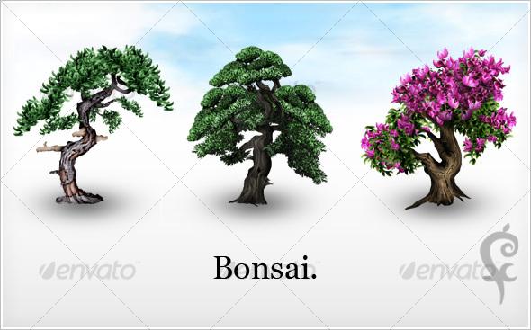 Bonsai. - Objects Illustrations