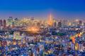 Tokyo, Japan Aerial View - PhotoDune Item for Sale