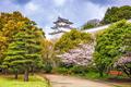 Akashi Castle in Spring - PhotoDune Item for Sale