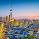 Tokyo, Japan Skyline - PhotoDune Item for Sale