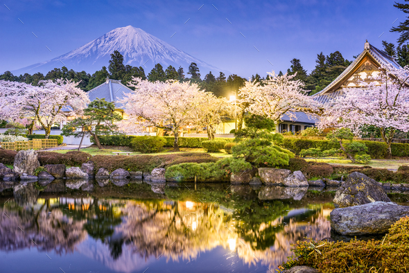 Mt. Fuji in Spring - Stock Photo - Images