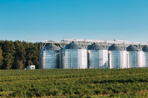 Modern Granary, Grain-drying Complex, Commercial Grain Or Seed S - Stock Photo - Images