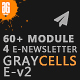 Graycells Email v2 - Responsive With Stampready Online Builder 60+ Modules - ThemeForest Item for Sale