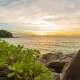 Rocks with Tropical Plants on the Beach at Sunset  in Phuket, Thailand - VideoHive Item for Sale