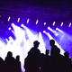 Group of friends enjoying music festival together. Silhouette of friends socializing at a concert - PhotoDune Item for Sale