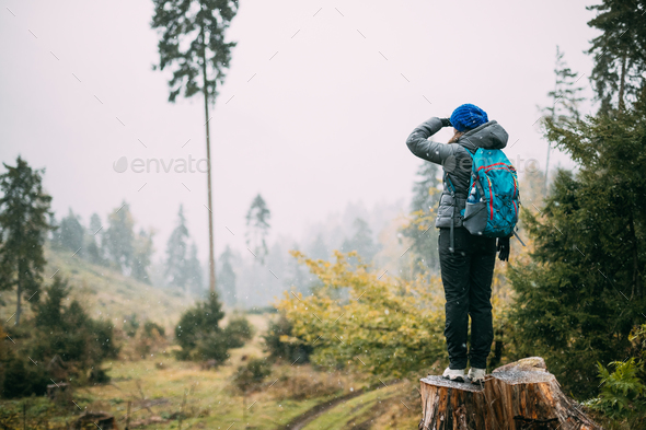 Young Woman Standing On Stump In Forest And Looking Into Distanc - Stock Photo - Images