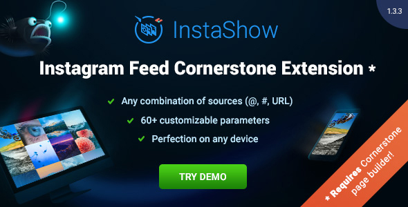 Instagram Gallery - Instagram for Cornerstone - CodeCanyon Item for Sale