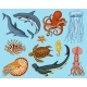 Fish or Sea Creature Set