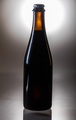Homebrew Fruit Beer over Bright Background - PhotoDune Item for Sale