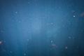 Cloud of Fish in the Deep Blue Ocean - PhotoDune Item for Sale