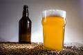 Homebrew Blonde Pint and empty bottle of Beer on Pislner Malt Gr - PhotoDune Item for Sale