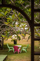 Beautiful Garden and Table in the Caribbean - PhotoDune Item for Sale