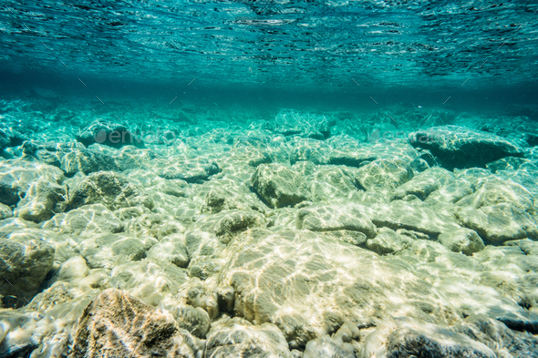 Bottom of the Bonaventure Cristal Clear River - Stock Photo - Images