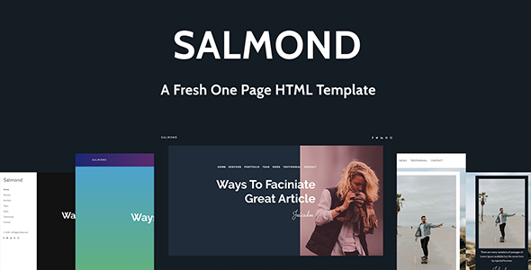 ThemeForest Salmond A Fresh One Page HTML Template 21110069