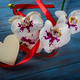 Branch white Orchid and heart - PhotoDune Item for Sale