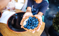 Dessert with blueberries in an edible basket - PhotoDune Item for Sale