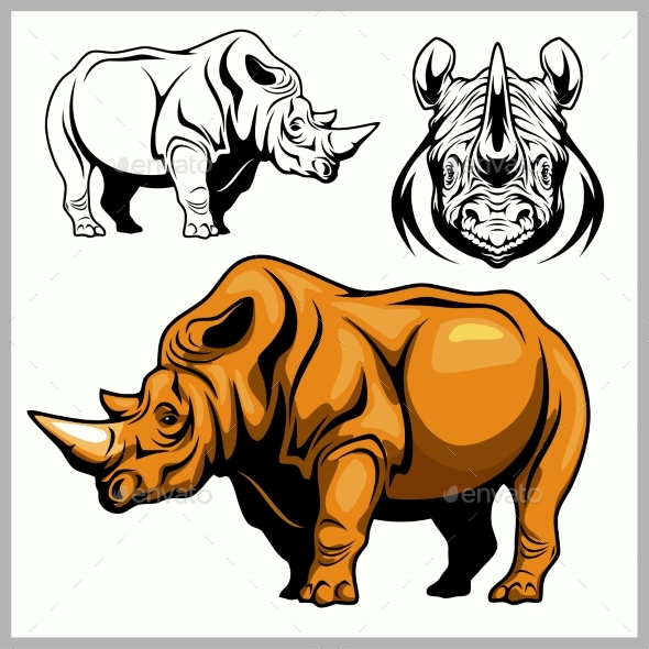 Rhinoceros in a Profile and Front View - Animals Characters