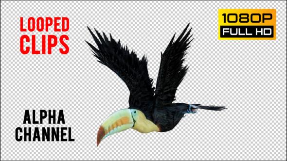 VideoHive Tukan 1 Realistic Pack 4 21247645
