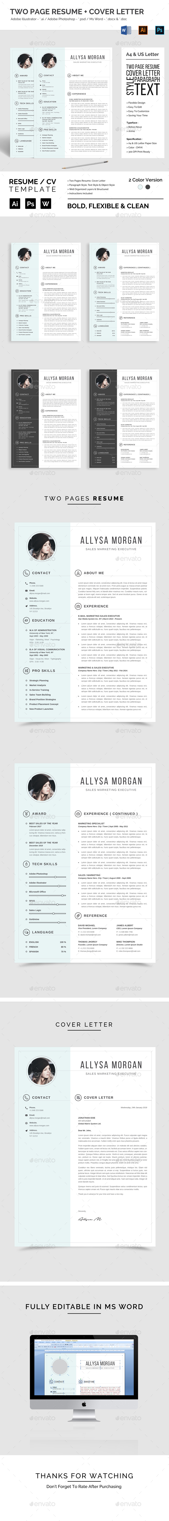 resume templates from graphicriver - Envato Resume Templates