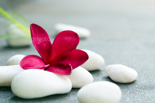 Spa stones concept - Stock Photo - Images