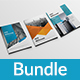 A4 Brochure Bundle - GraphicRiver Item for Sale
