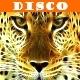 Disco Kit