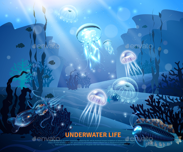 Underwater Life Background Light Poster - Animals Characters