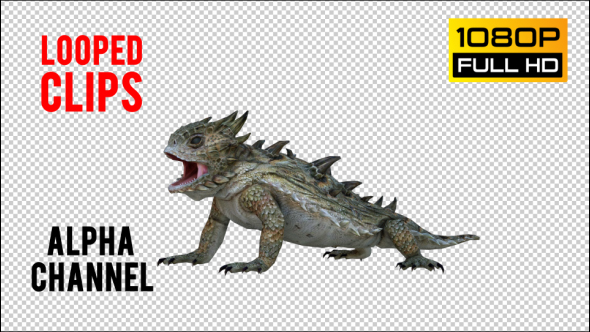 VideoHive Horn Lizard 1 Realistic Pack 4 21251246