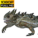 Horn Lizard 2 Realistic Pack 4 - VideoHive Item for Sale