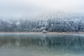 lake and forest in winter - PhotoDune Item for Sale