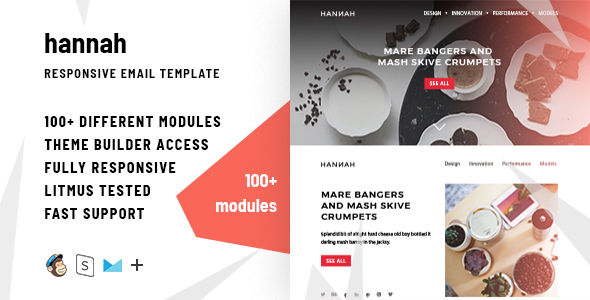 Hannah – 100+ Modules - Responsive Email + StampReady Builder & Mailchimp Editor