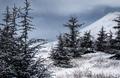 Winter mountains landscape - PhotoDune Item for Sale