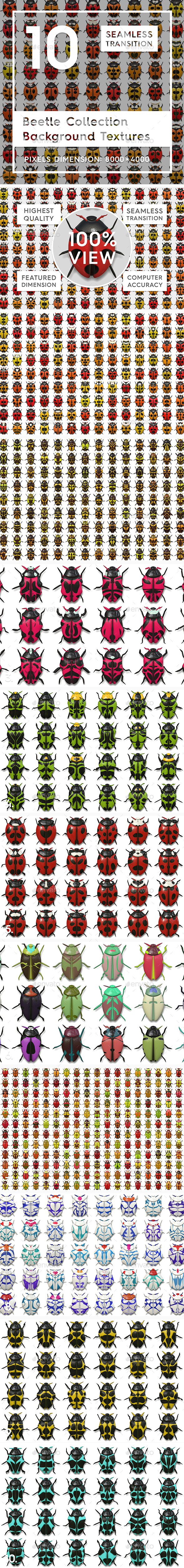 10 Beetle Collection Backgrounds - 3D Backgrounds