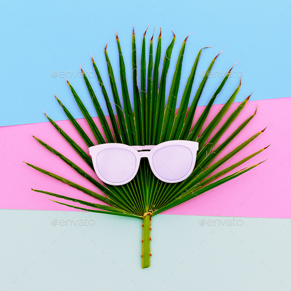 Palm and sunglasses. Tropic style minimal - Stock Photo - Images