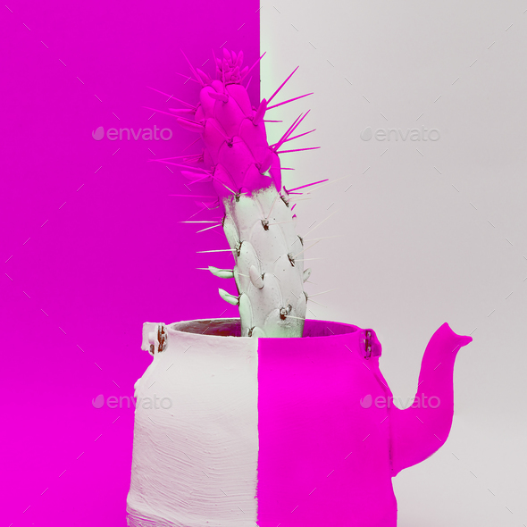 Creative Cactus in a teapot. Minimal art design - Stock Photo - Images