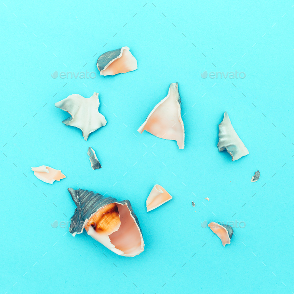 Broken seashells minimal art - Stock Photo - Images