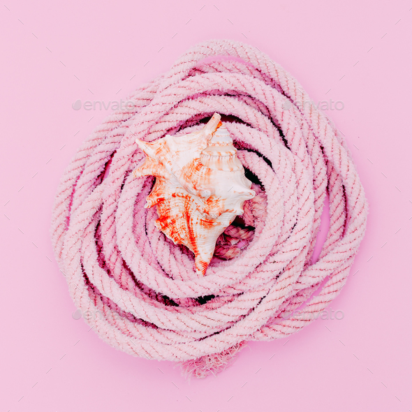 Shell and sea rope. Sea vibes - Stock Photo - Images